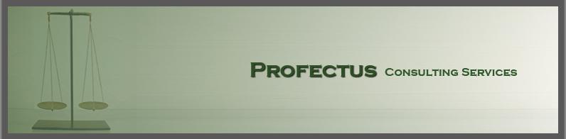 Profectus Consulting